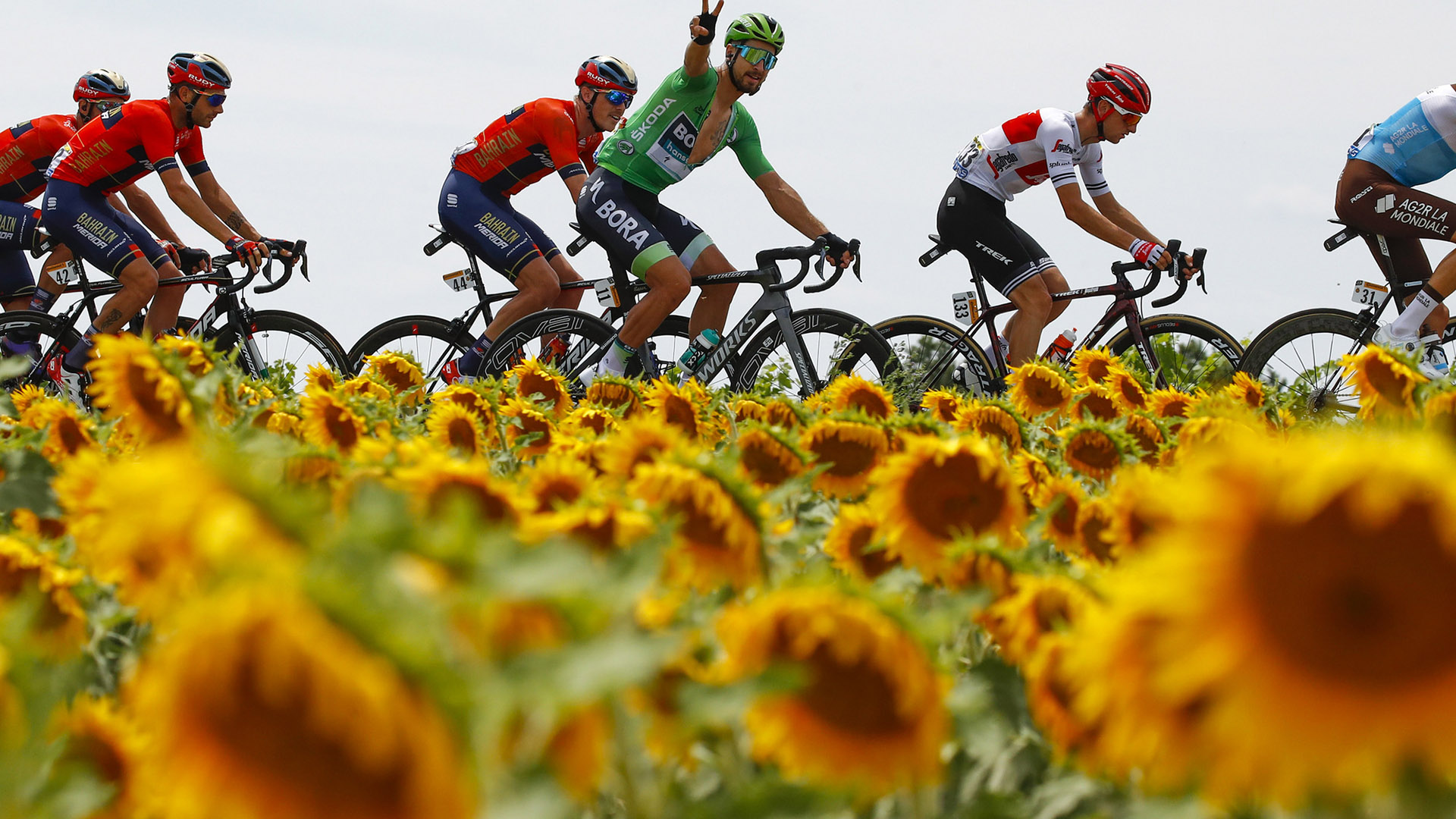 TdF_bettiniphoto_Sagan_Slider_4.jpg